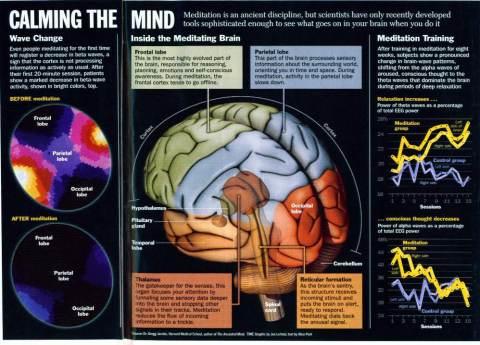 Image Of Brain When Doing Zikr